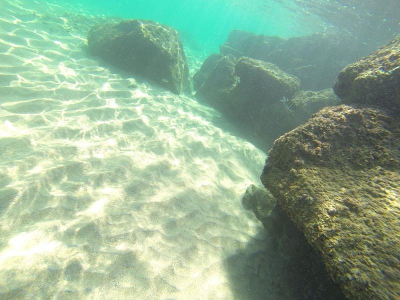 2015_Sandy_Beach_Fujairah_Underwater5